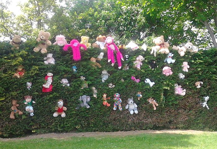 Teddy Bears Picnic (12)_opt